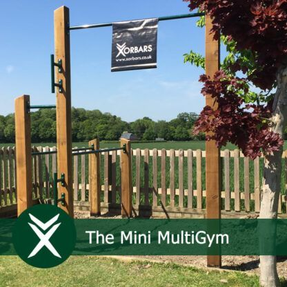 Mini Garden Gym Calisthenics